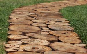 дорожка из спилов дерева